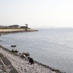 《追想1 鳥取淀江の海岸》